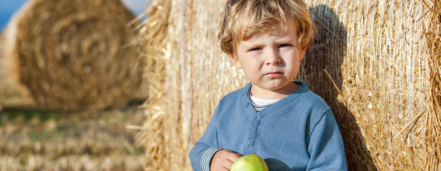 Bauern für Bauern - Maschinenring
